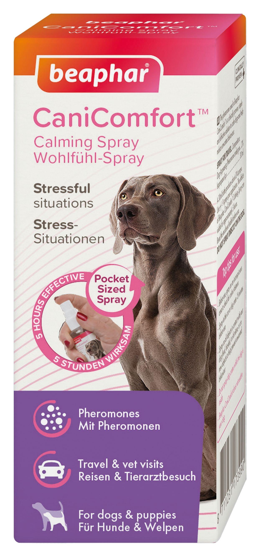 Beaphar CaniComfort Spray 30ml For Hund